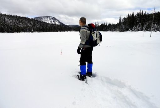 White Pass Nordic Center Snowshoe Trails