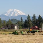 Mount Rainier as seen from Enumclaw Photo Courtesy Dan DeVries Photography