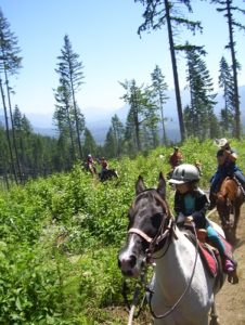 Guided trail ride by Echo River Ranch